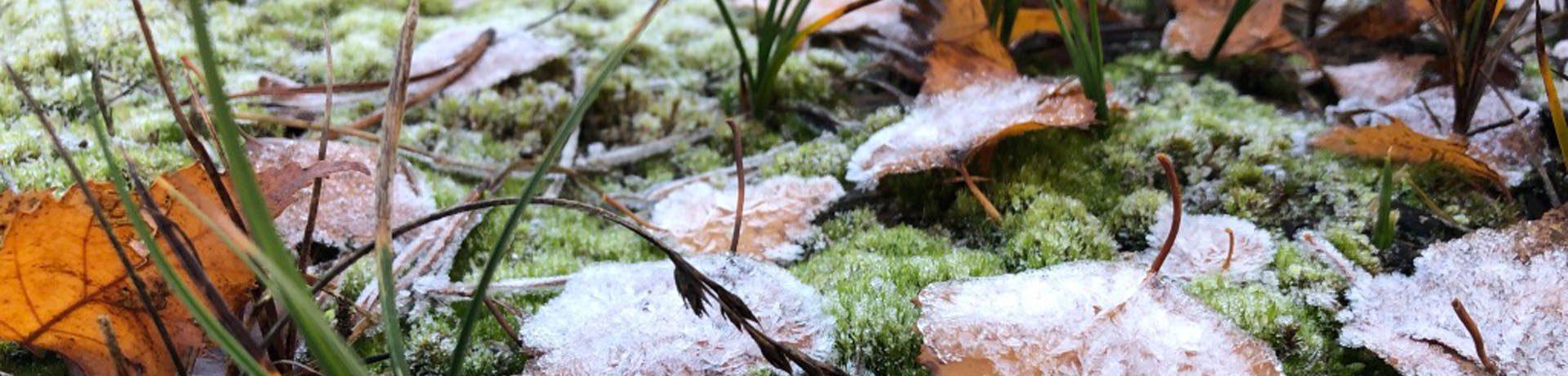winterlaub1